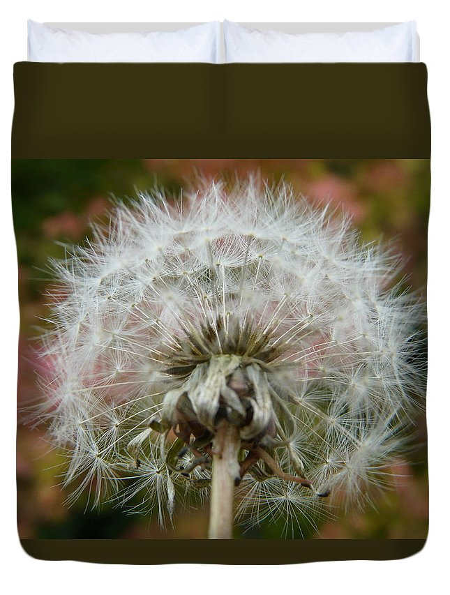 Blowball Duvet Cover featuring the photograph Blowball 2 by Valerie Ornstein