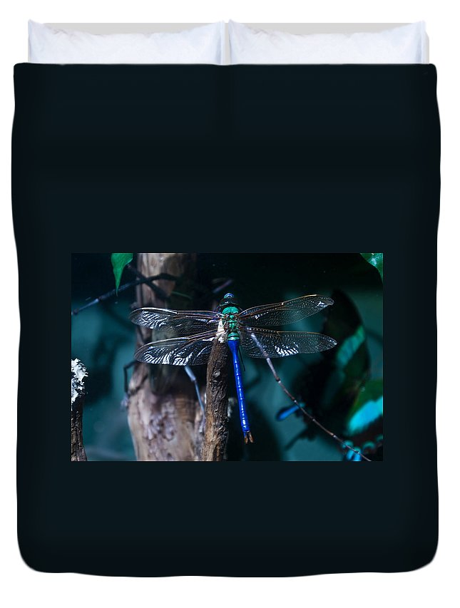 Blue Duvet Cover featuring the photograph Blue And Green Dragonfly by Douglas Barnett