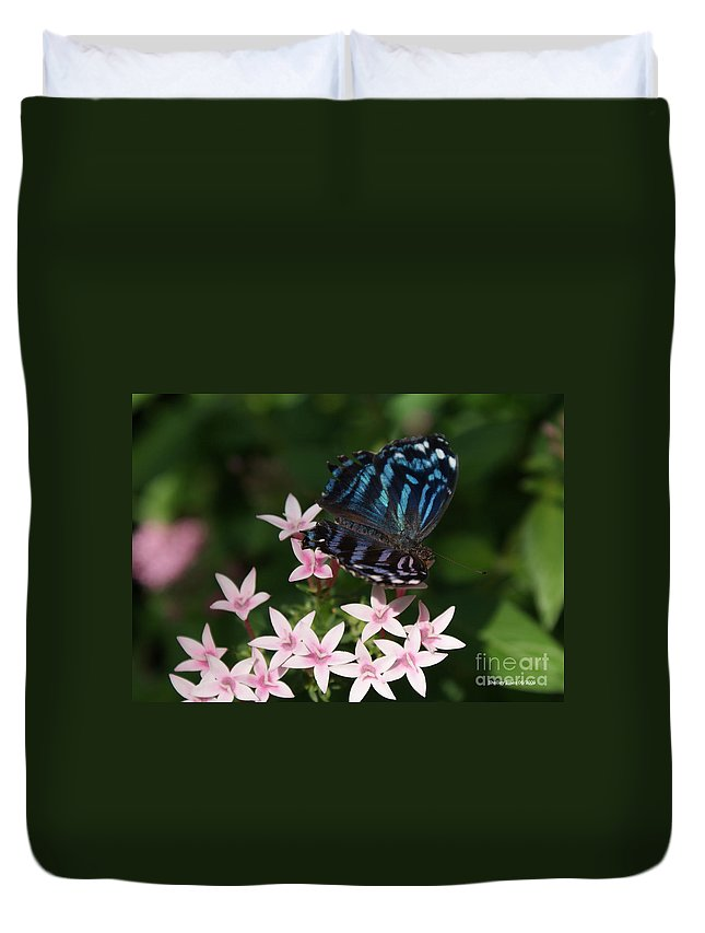Butterfly Duvet Cover featuring the photograph Blue And Pink Make Lilac by Shelley Jones
