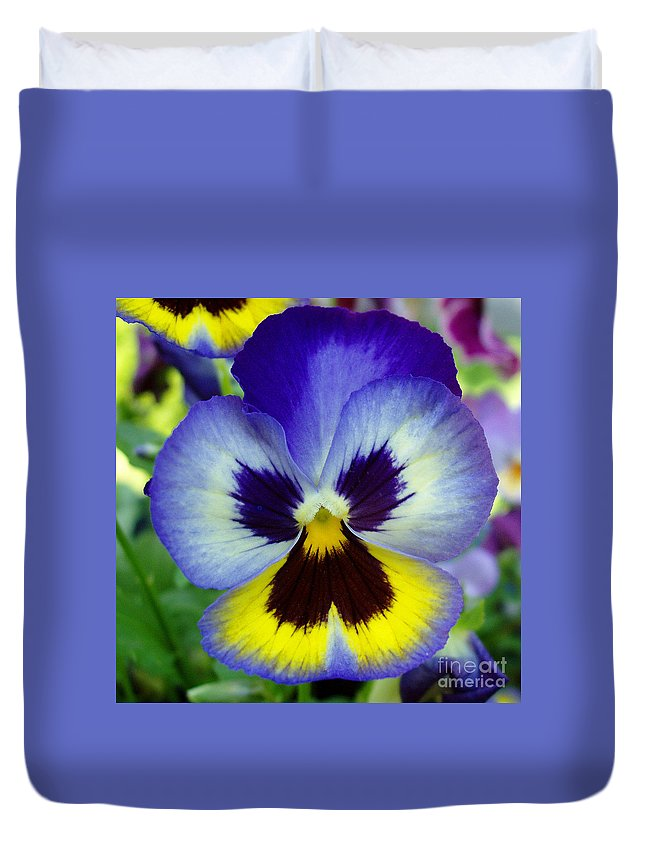 Flowers Duvet Cover featuring the photograph Blue And Yellow Pansy by Nancy Mueller