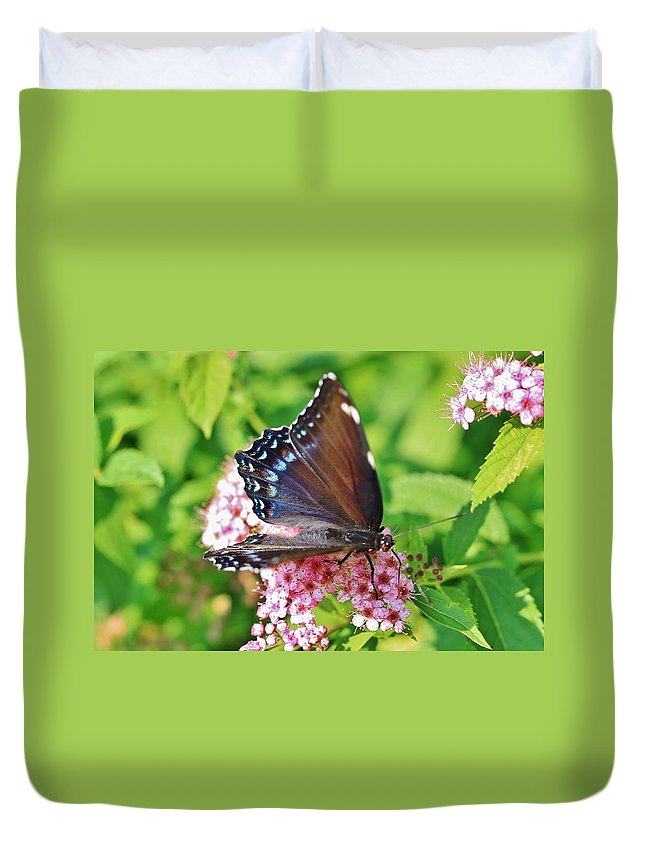Butterfly Duvet Cover featuring the photograph Blue Beauty 1 by Debbie Storie