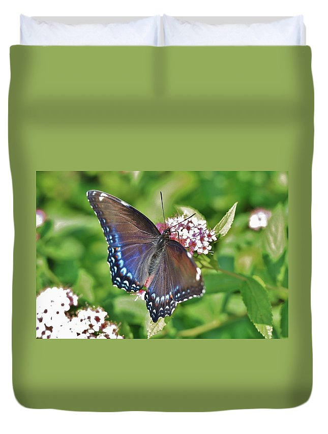 Butterfly Duvet Cover featuring the photograph Blue Beauty 3 by Debbie Storie
