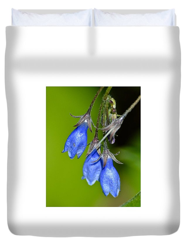 Blue Bells Duvet Cover featuring the photograph Blue Bells Are Ringing by Hella Buchheim