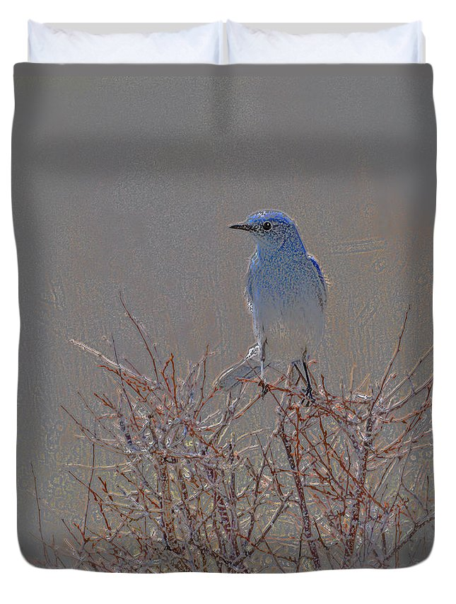 Colored Pencil Duvet Cover featuring the photograph Blue Bird Colored Pencil by Heather Coen