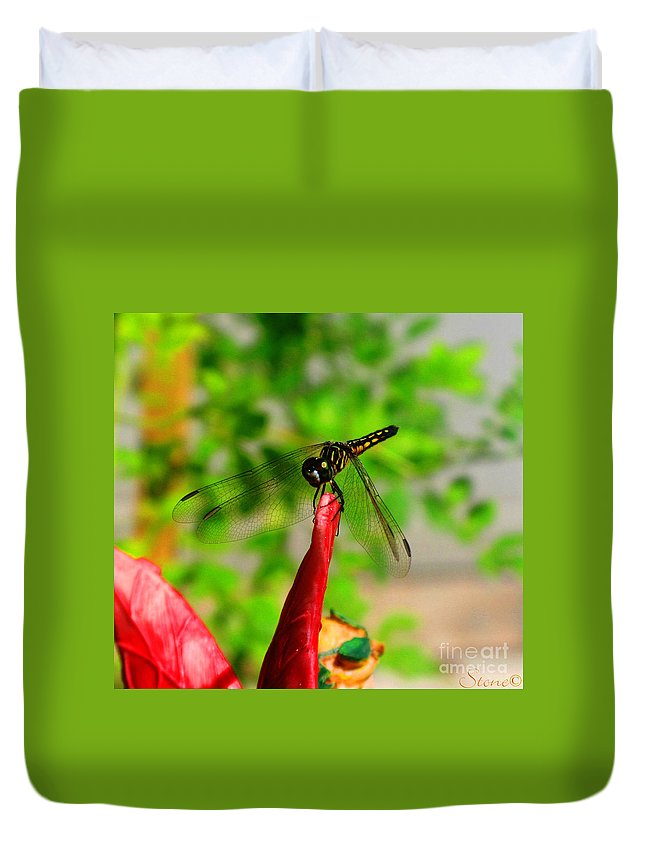 Damselfly Duvet Cover featuring the photograph Blue Dasher Damselfly by September Stone