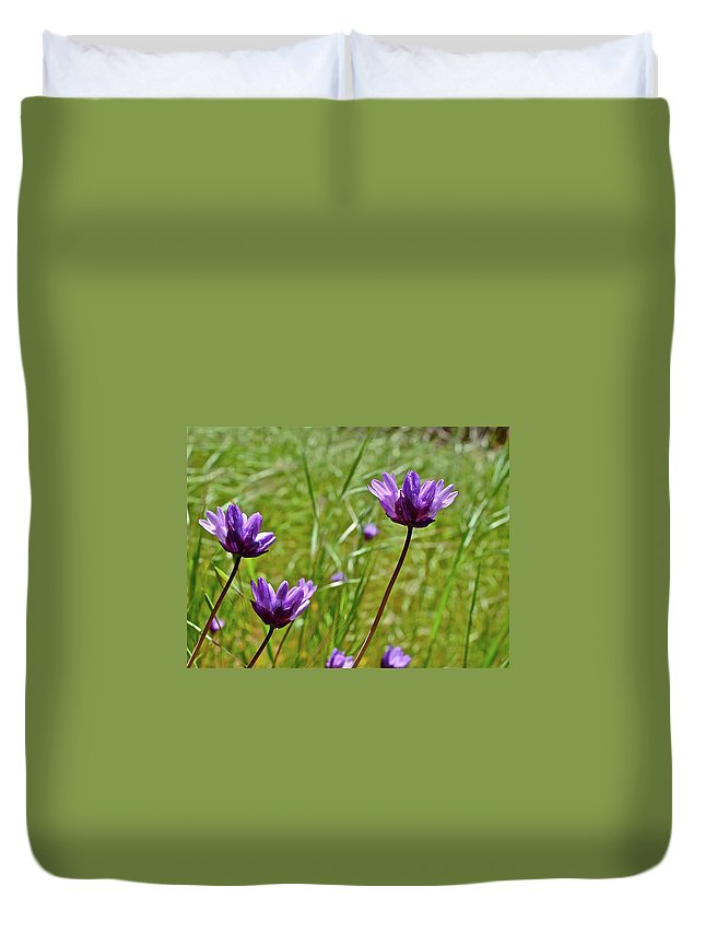Flowers Duvet Cover featuring the photograph Blue Dicks by Diana Hatcher