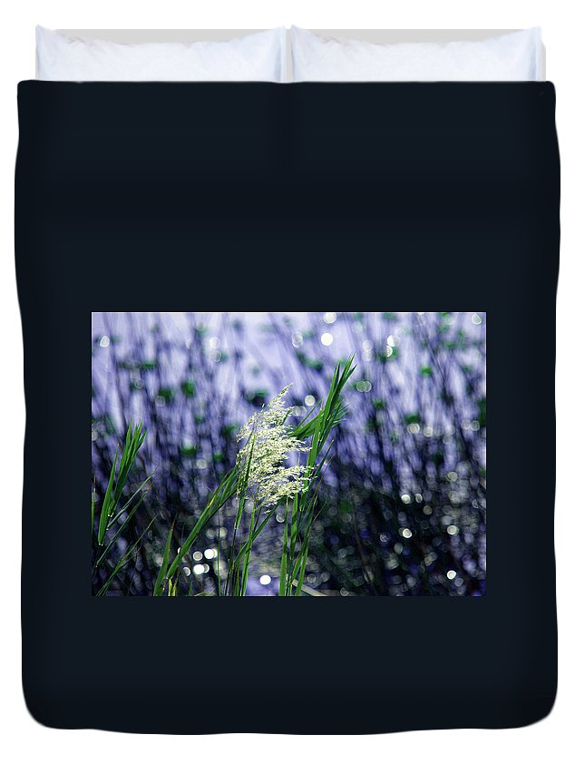 Stars Duvet Cover featuring the photograph Blue Dreams Of Sunlight by Susanne Van Hulst