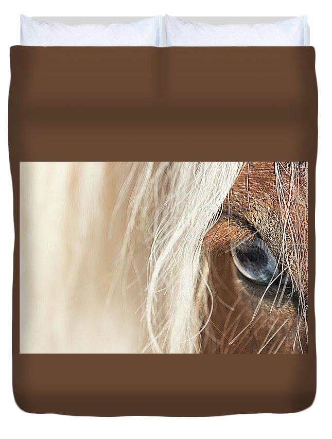 Horse Duvet Cover featuring the photograph Blue Eyed Horse by Kathryn Bell