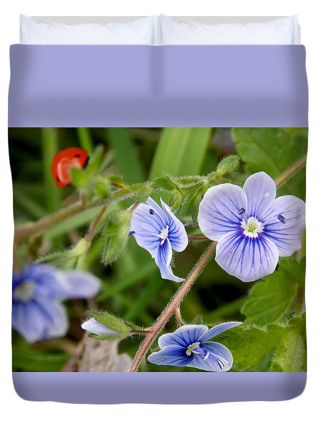 Flower Duvet Cover featuring the photograph Blue Flower by Olja Simovic