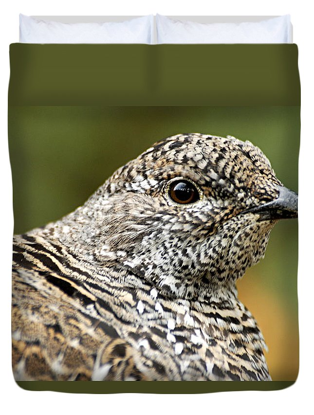 Blue Grouse Duvet Cover featuring the photograph Blue Grouse Hen 2 by Larry Ricker