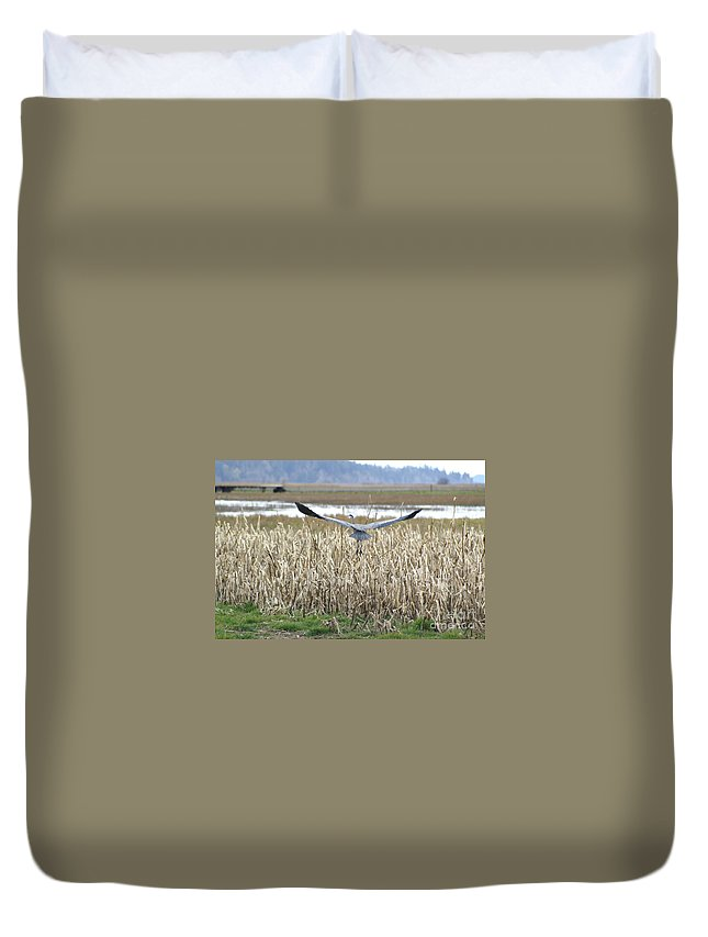 Heron Duvet Cover featuring the photograph Blue Heron Flight by Louise Magno