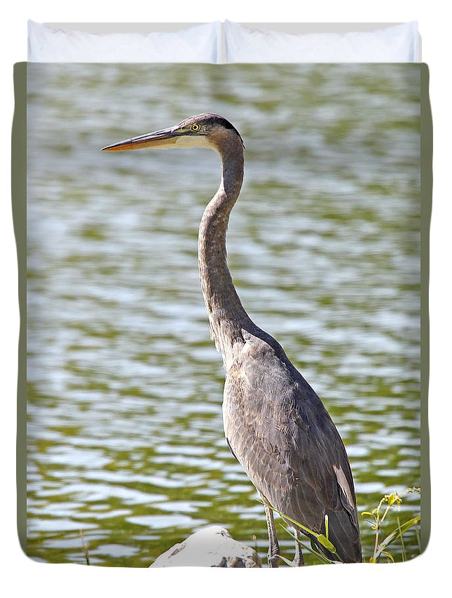 Blue Heron Duvet Cover featuring the photograph Blue Heron by James Headley