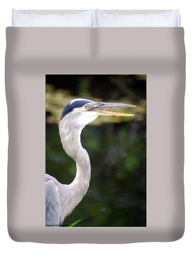 Bird Duvet Cover featuring the photograph Blue Heron by Jorge Cruz
