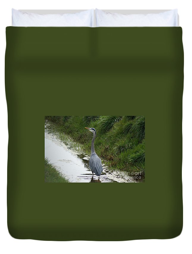 Heron Duvet Cover featuring the photograph Blue Heron by Louise Magno