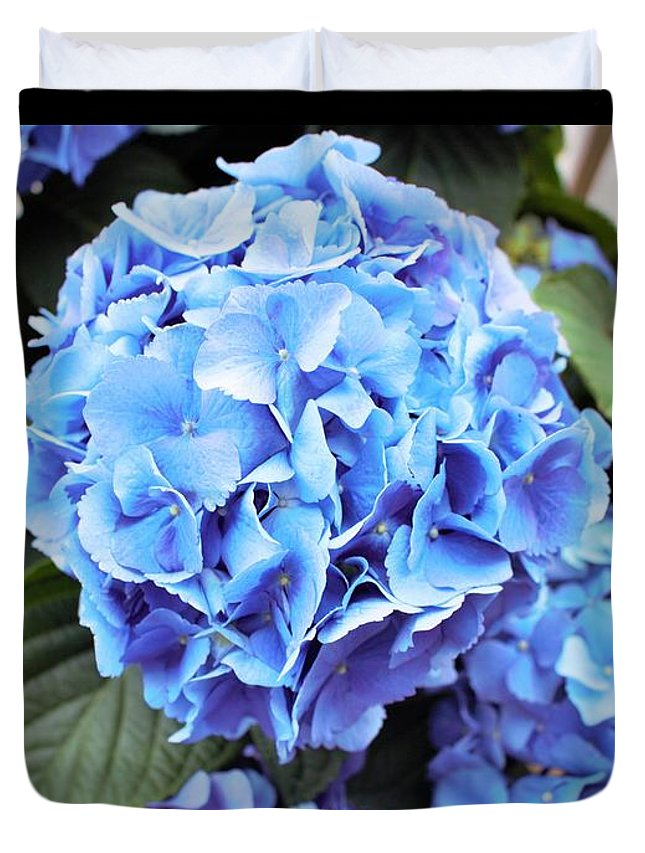 Blue Duvet Cover featuring the photograph Blue Hydrangea by Tracy Smith