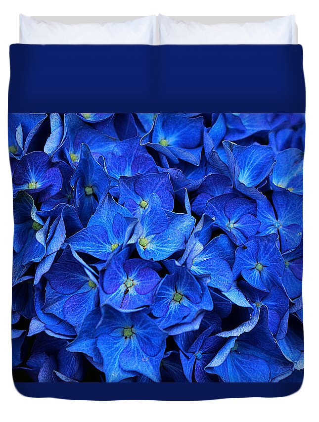 Hydrangea Duvet Cover featuring the photograph Blue Hydrangea by Vicky Adams