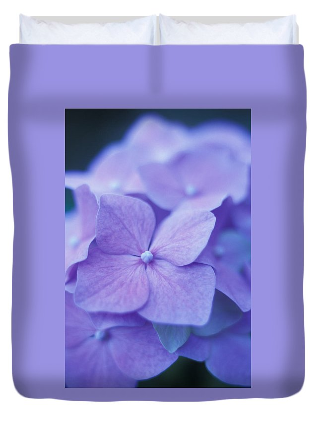 Floral Duvet Cover featuring the photograph Blue Hydrangeas by Kathy Yates