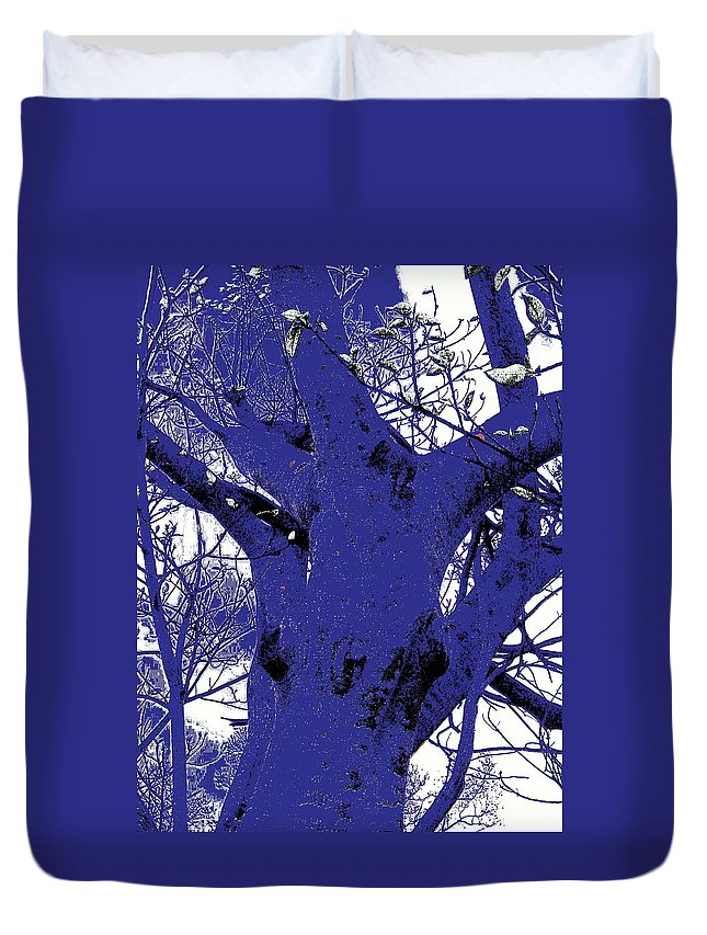 Landscape Duvet Cover featuring the photograph Blue Ice by Ed Smith