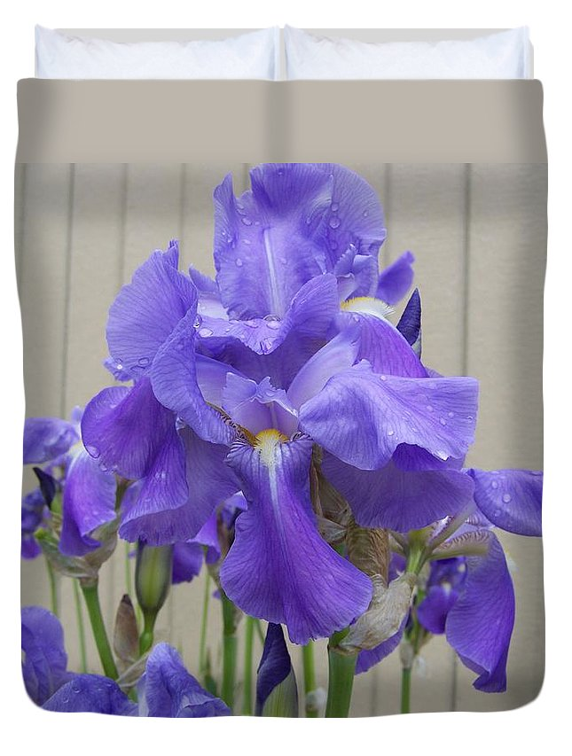 Flowers Duvet Cover featuring the photograph Blue Iris by Laurie Kidd