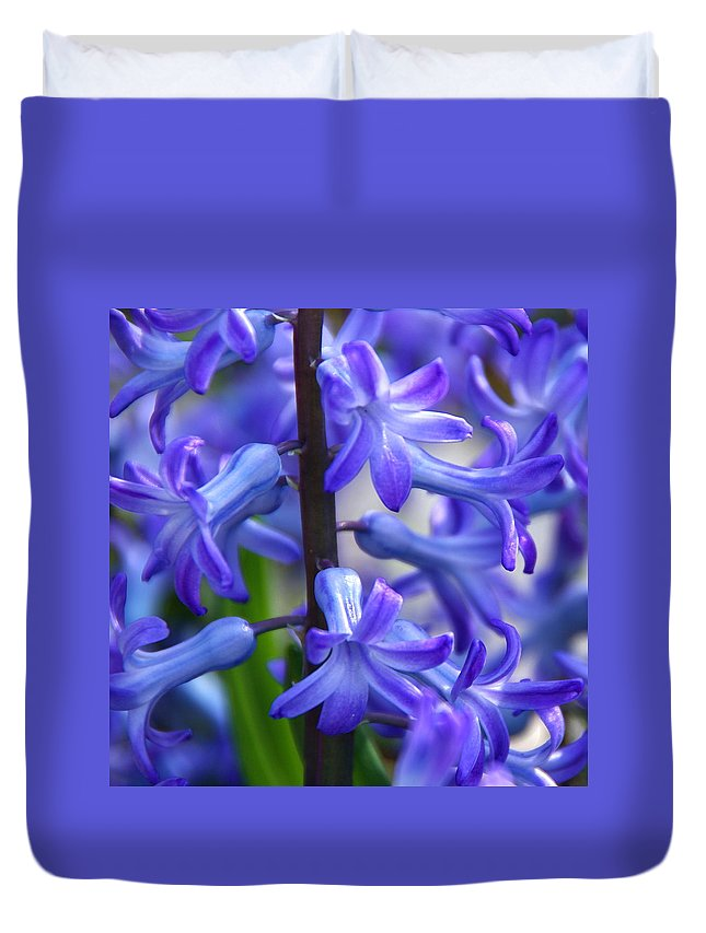 Blue Hyacinth Duvet Cover featuring the photograph Blue Rhapsody by Byron Varvarigos