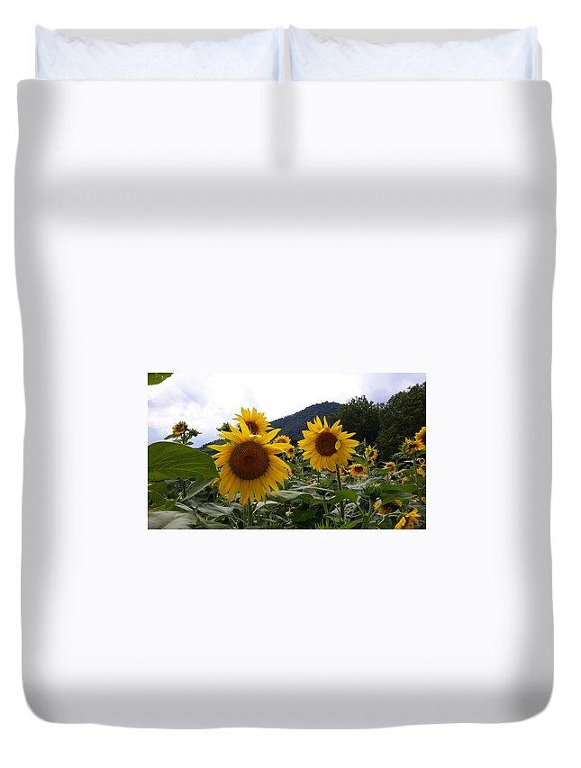 Flowers Duvet Cover featuring the photograph Blue Ridge Sunflowers by Joe D Dry