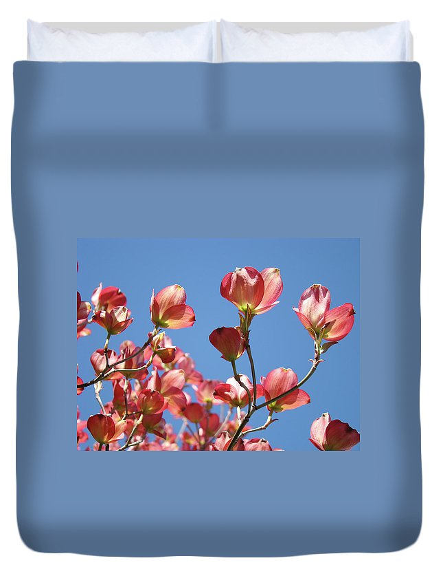Dogwood Duvet Cover featuring the photograph Blue Sky Art Prints Pink Dogwood Flowers 16 Dogwood Tree Art Prints Baslee Troutman by Baslee Troutman