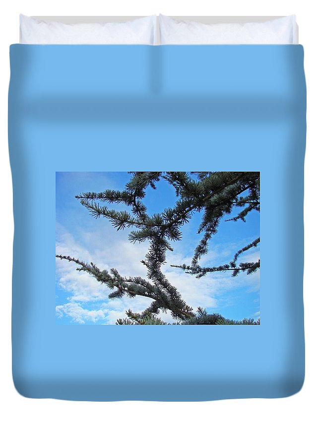 Pine Duvet Cover featuring the photograph Blue Sky Art Prints White Clouds Conifer Pine Branches Baslee Troutman by Baslee Troutman