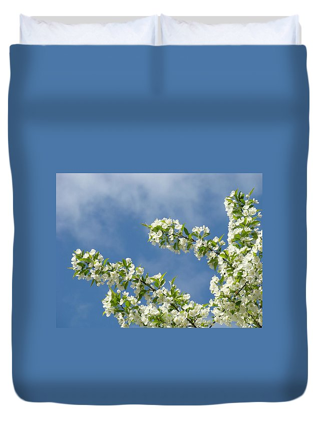Blossom Duvet Cover featuring the photograph Blue Sky White Clouds Landscape Art White Tree Blossoms Spring by Baslee Troutman