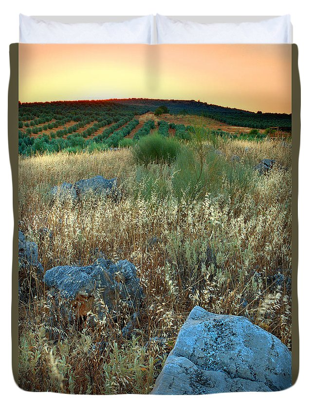 Iznajar Duvet Cover featuring the photograph blue stones amongst the olive groves near Iznajar Andalucia Spain by Mal Bray