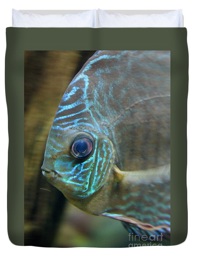 Blue Fish Duvet Cover featuring the greeting card Blue Tropical Fish by Carol Groenen