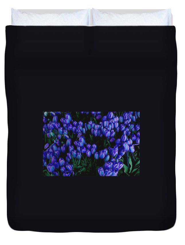 Blue Duvet Cover featuring the photograph Blue Tulips by Tom Reynen
