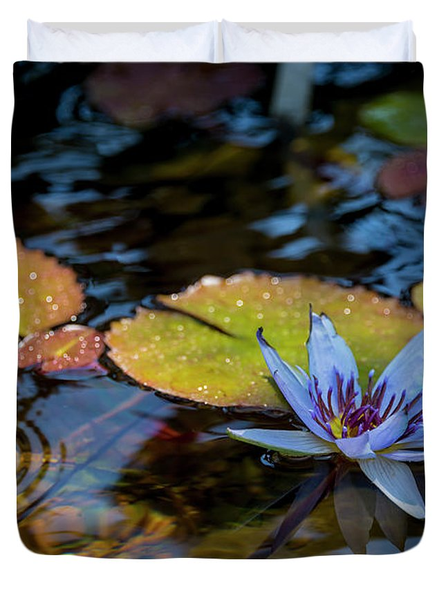 Blue Water Lily Flower Pond Duvet Cover featuring the photograph Blue Water Lily Pond by Brian Harig