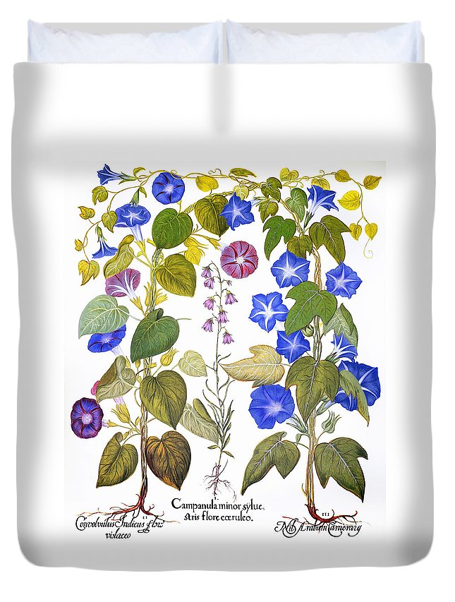 1613 Duvet Cover featuring the photograph Bluebell And Morning Glory by Granger