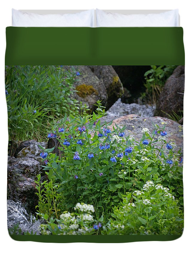 Wildflowers Duvet Cover featuring the photograph Bluebells by Heather Coen