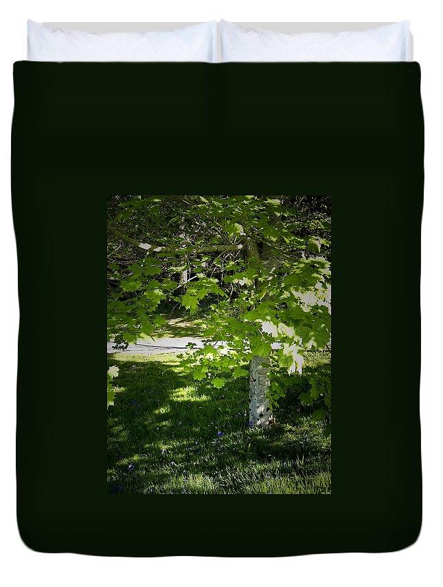Irish Duvet Cover featuring the photograph Bluebells In Killarney National Park Ireland by Teresa Mucha