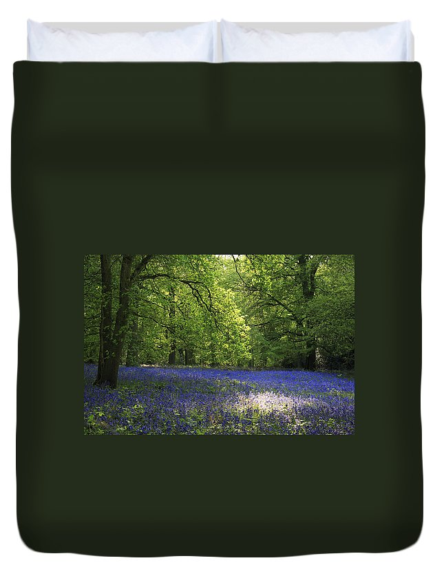 Bluebells Duvet Cover featuring the photograph Bluebells by Phil Crean