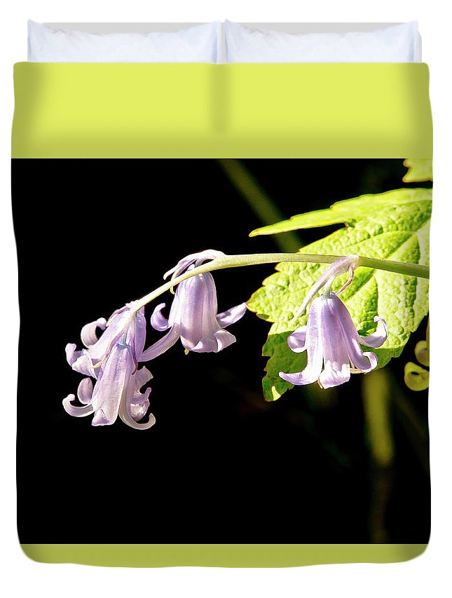 Bluebells Duvet Cover featuring the photograph Bluebells Under The Sun Ray. by Elena Perelman