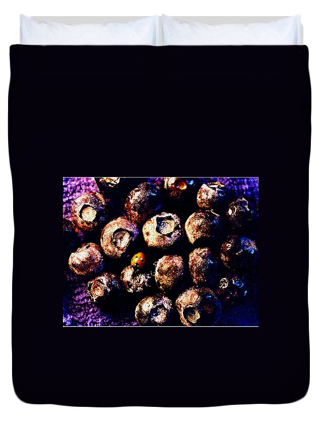 Blueberries Duvet Cover featuring the photograph Blueberries And Ladybug by Nancy Mueller