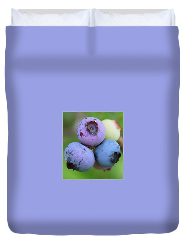 Blueberry Duvet Cover featuring the photograph Blueberries On The Vine 2 by Cathy Lindsey