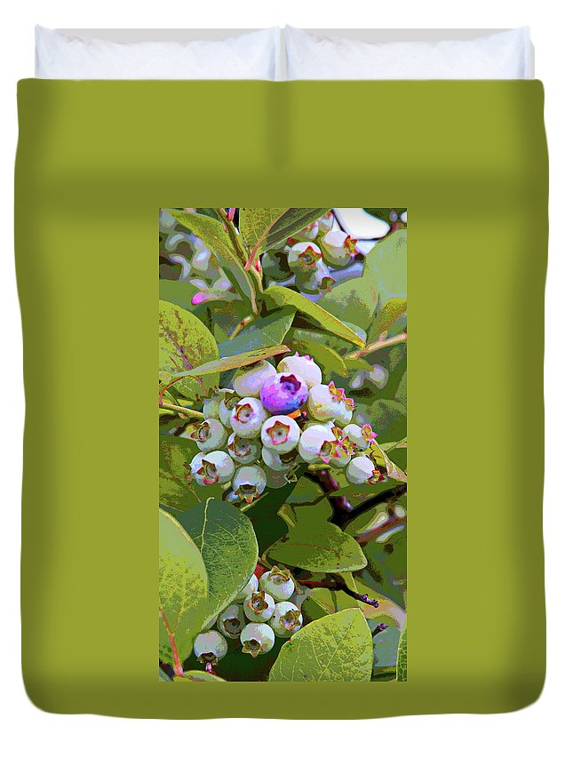 Blueberry Duvet Cover featuring the photograph Blueberries On The Vine 7 by Cathy Lindsey
