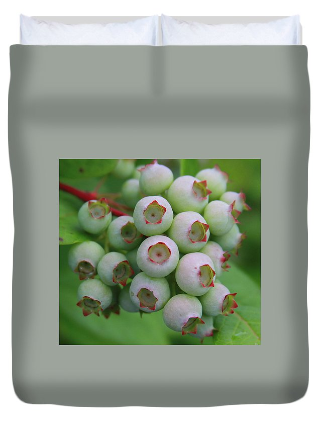 Blueberry Duvet Cover featuring the photograph Blueberries On The Vine 9 by Cathy Lindsey