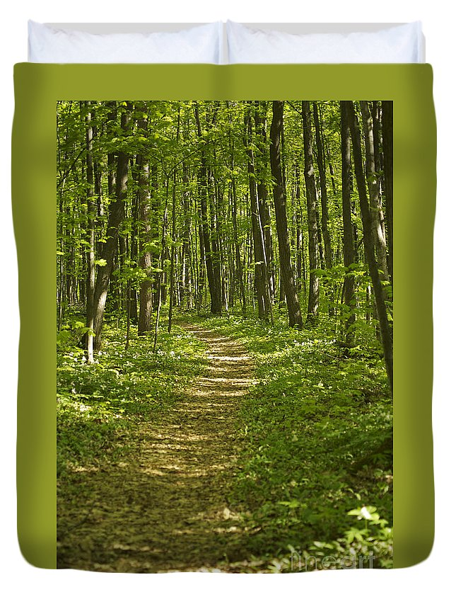 Trail Duvet Cover featuring the photograph Bluff Trail Awenda Provincial Park by Elaine Mikkelstrup