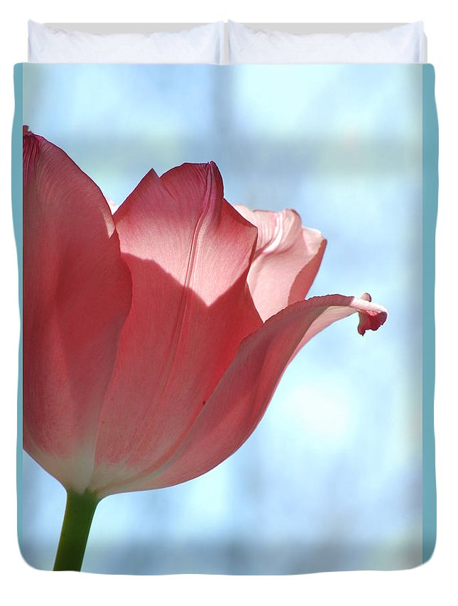 Tulip Duvet Cover featuring the photograph Blush by Michelle Hastings