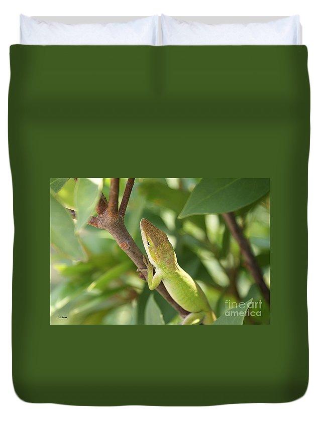 Lizard Duvet Cover featuring the photograph Blusing Lizard by Shelley Jones