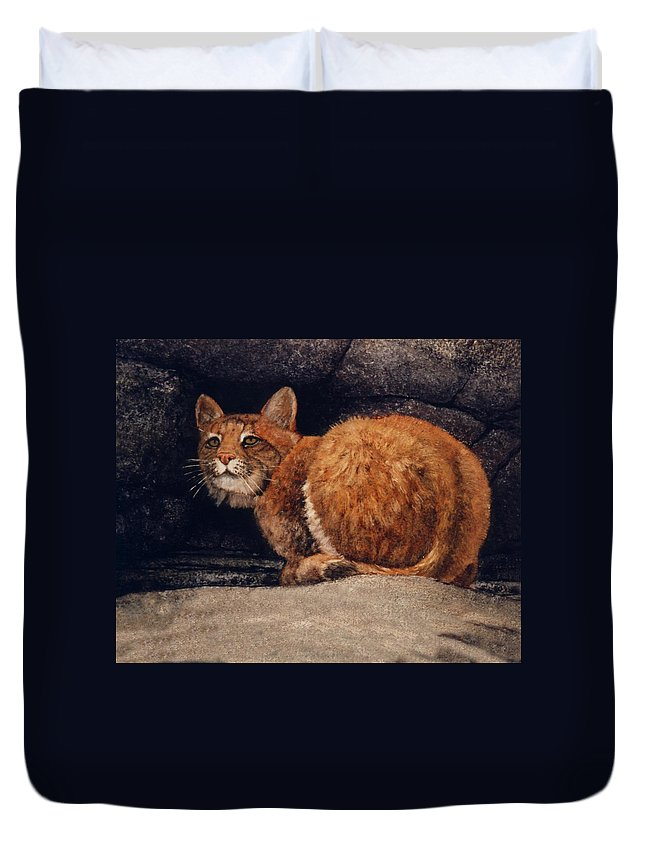 Wildlife Duvet Cover featuring the painting Bobcat On Ledge by Frank Wilson