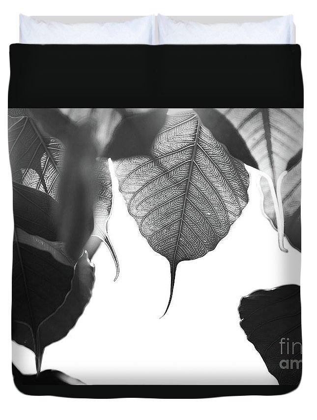 Art Duvet Cover featuring the photograph Bodhi Leaves by Atiketta Sangasaeng