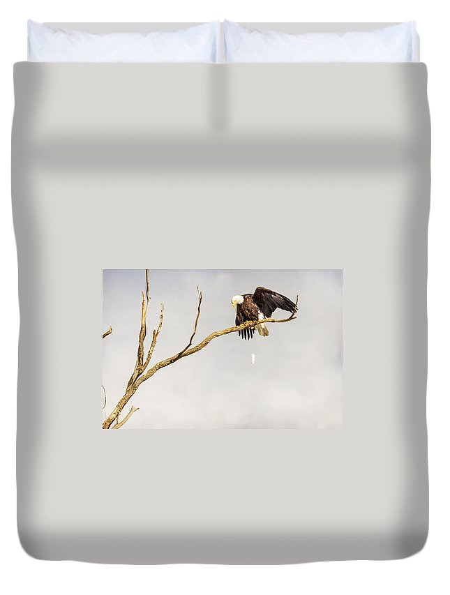 Eagle Duvet Cover featuring the photograph Bombs Away by James BO Insogna