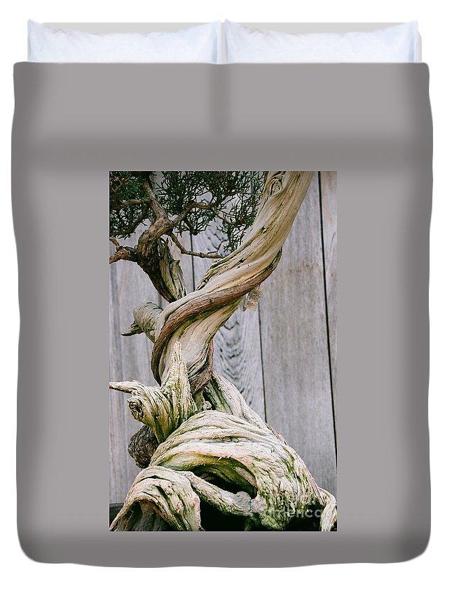 Tree Duvet Cover featuring the photograph Bonsai by Dean Triolo