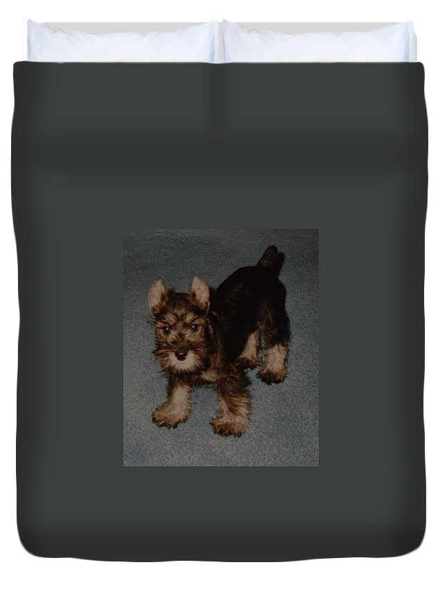 Dog Duvet Cover featuring the photograph Boo Boo by Rob Hans