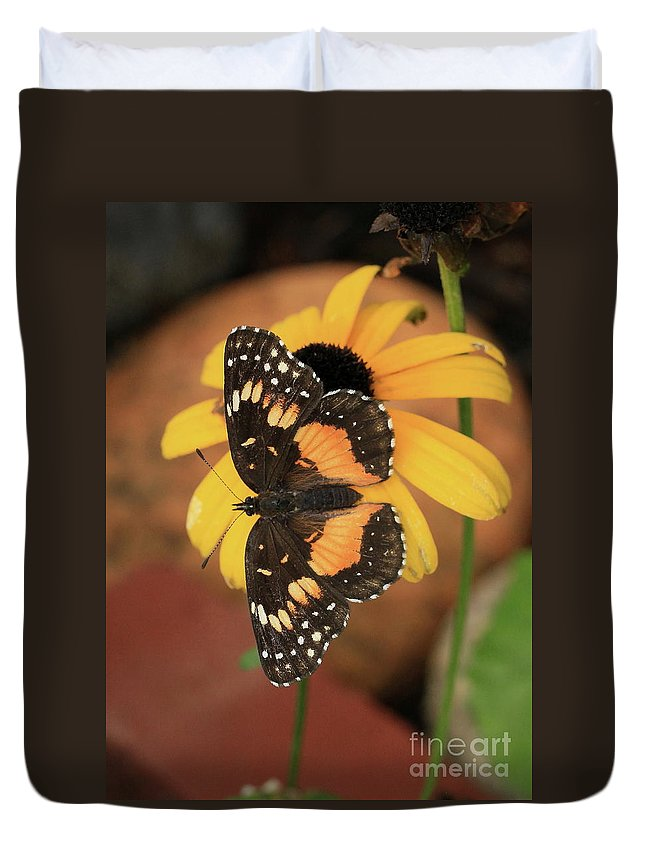 Bordered Patch Butterfly Duvet Cover featuring the photograph Bordered Patch by Gail Huddle